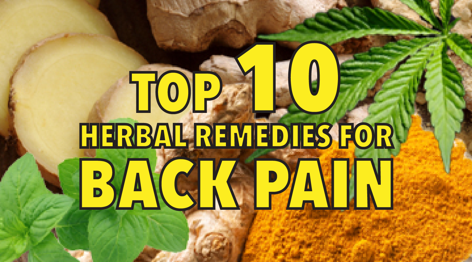 Top 10 herbal remedies for back pain
