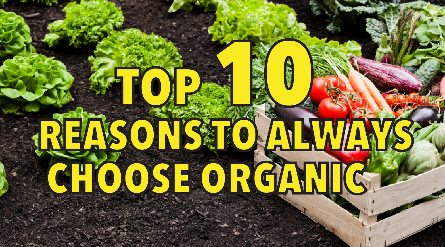 Top 10 reasons to always choose organic
