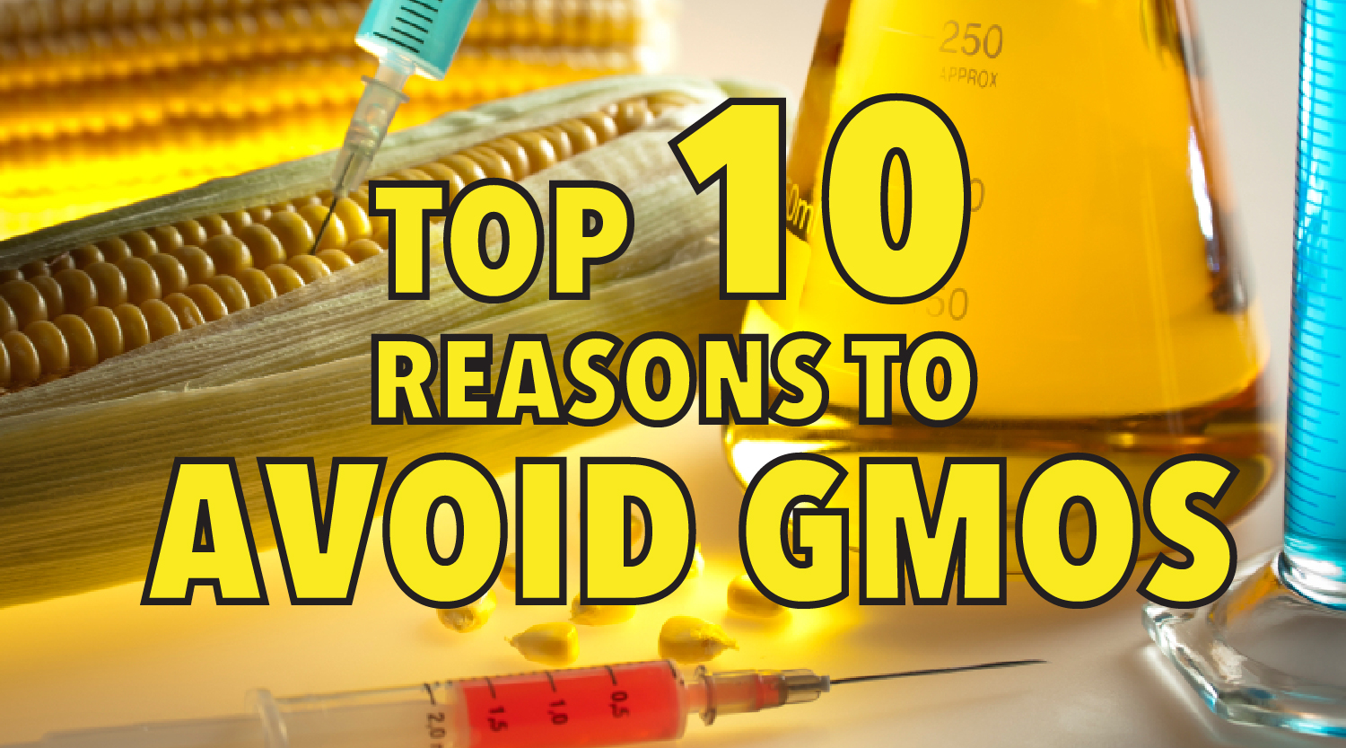 Top 10 reasons to avoid GMOs